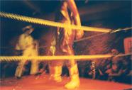Wrestling Bash